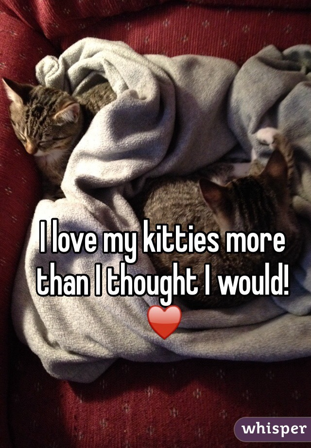 I love my kitties more than I thought I would!  ♥️