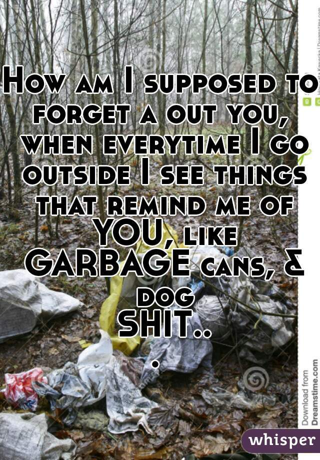 How am I supposed to forget a out you,  when everytime I go outside I see things that remind me of YOU, like GARBAGE cans, & dog SHIT...