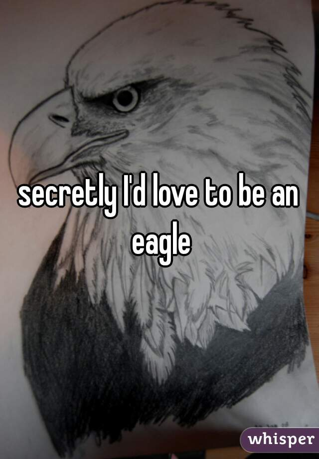secretly I'd love to be an eagle
