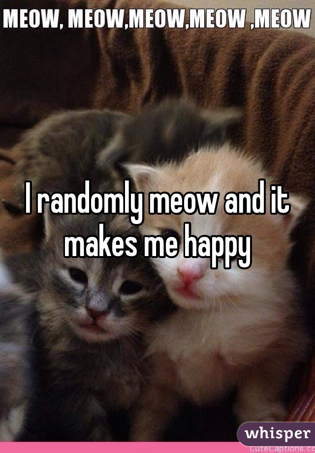 I randomly meow and it makes me happy