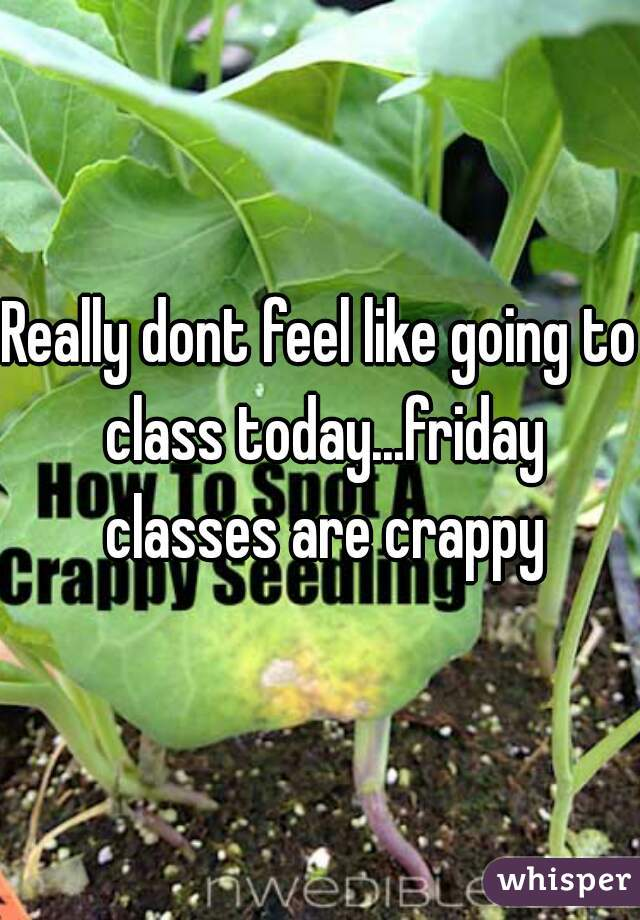 Really dont feel like going to class today...friday classes are crappy