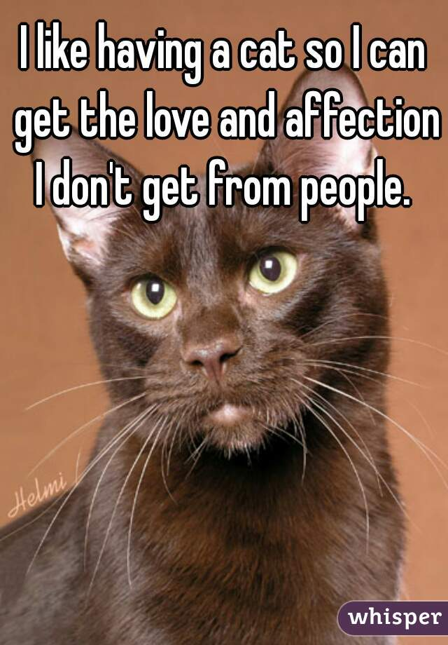 I like having a cat so I can get the love and affection I don't get from people.