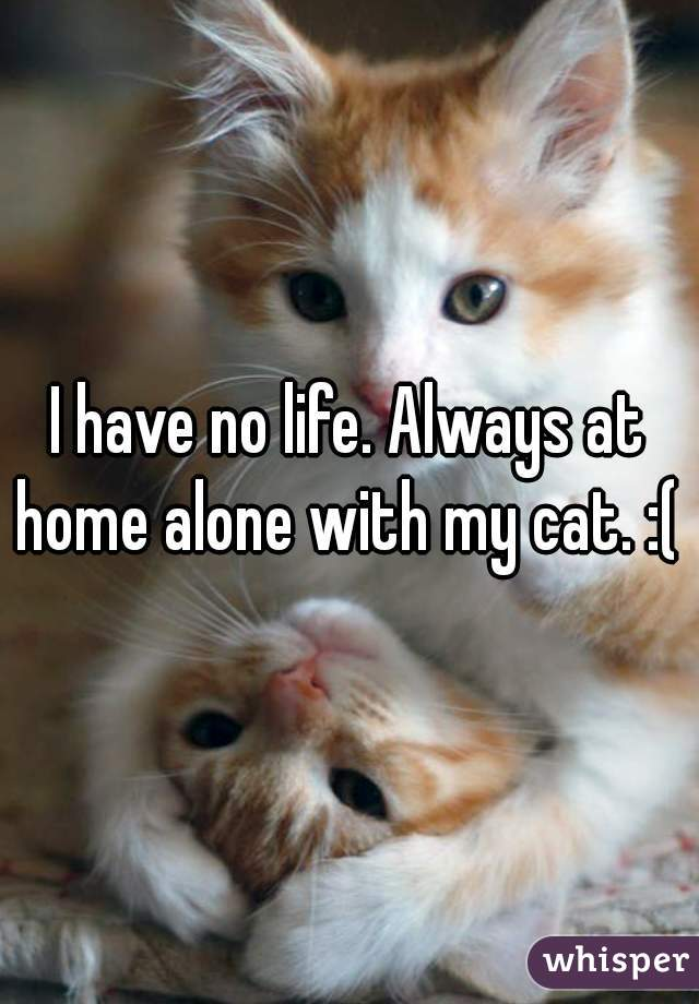 I have no life. Always at home alone with my cat. :(