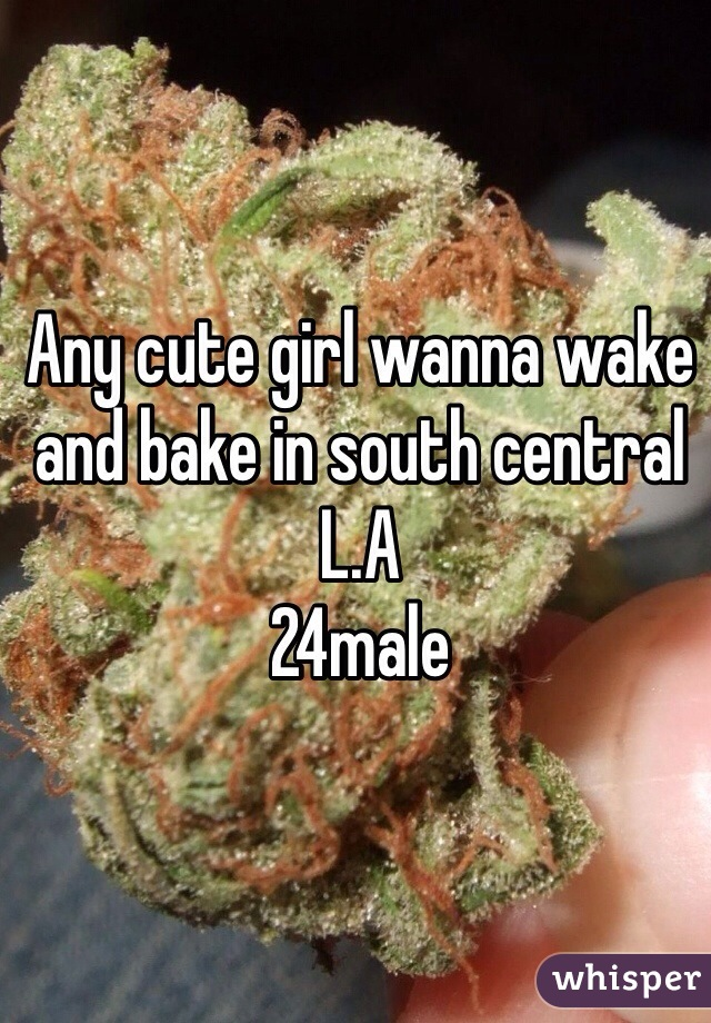 Any cute girl wanna wake and bake in south central L.A  24male