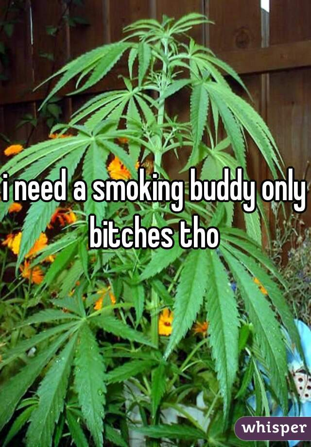 i need a smoking buddy only bitches tho