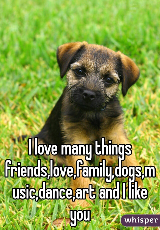 I love many things friends,love,family,dogs,music,dance,art and I like you