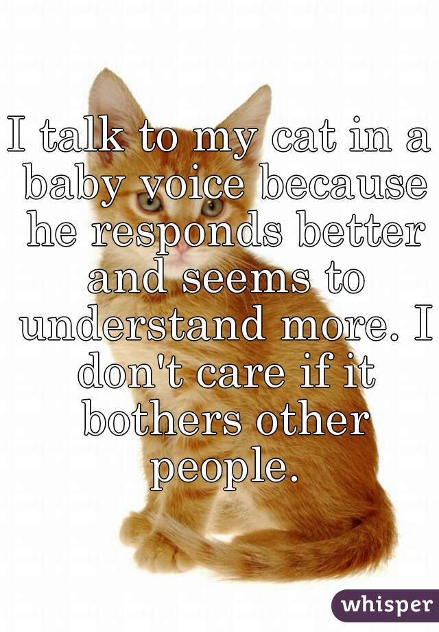 I talk to my cat in a baby voice because he responds better and seems to understand more. I don't care if it bothers other people.