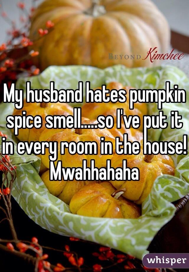 My husband hates pumpkin spice smell.....so I've put it in every room in the house! Mwahhahaha