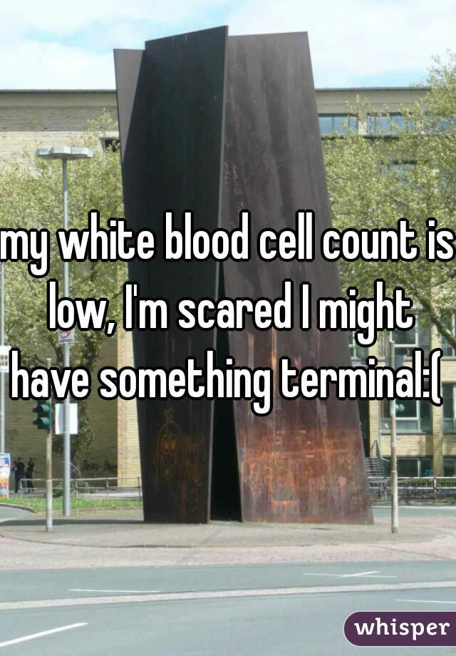 my white blood cell count is low, I'm scared I might have something terminal:(