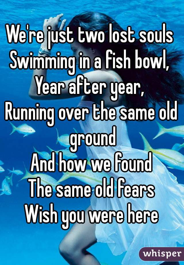 We're just two lost souls  Swimming in a fish bowl,  Year after year,  Running over the same old ground And how we found The same old fears Wish you were here
