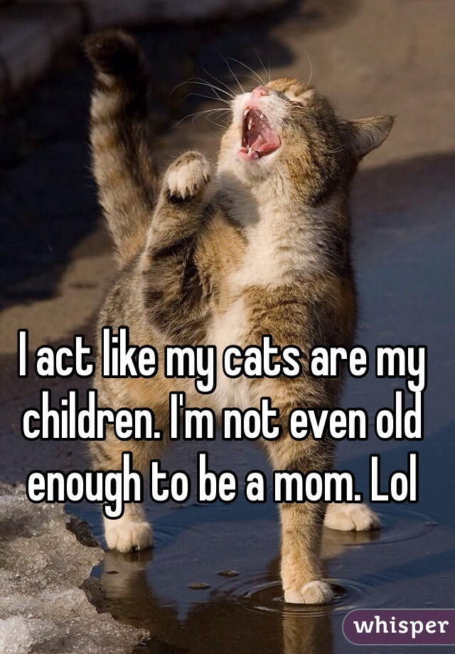 I act like my cats are my children. I'm not even old enough to be a mom. Lol