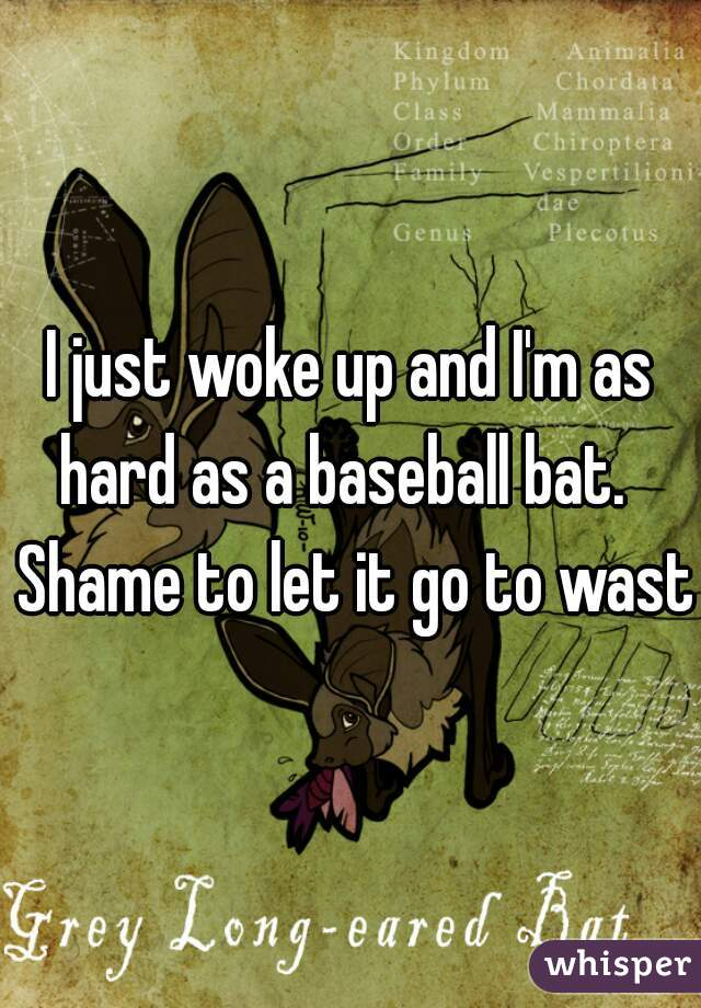 I just woke up and I'm as hard as a baseball bat.   Shame to let it go to waste