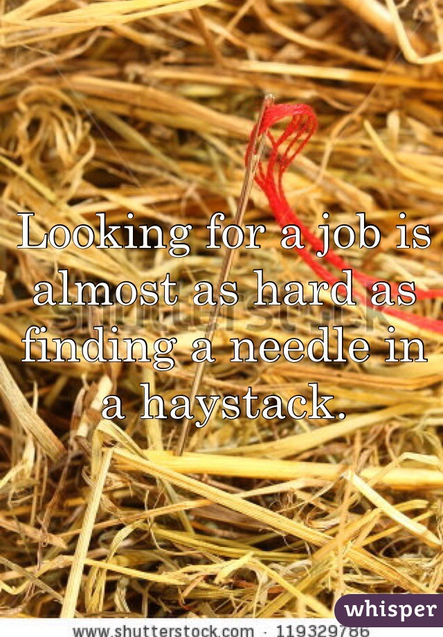 Looking for a job is almost as hard as finding a needle in a haystack.