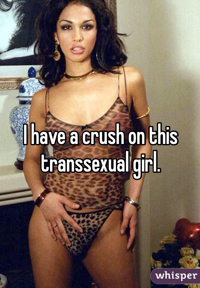 I have a crush on this transsexual girl.