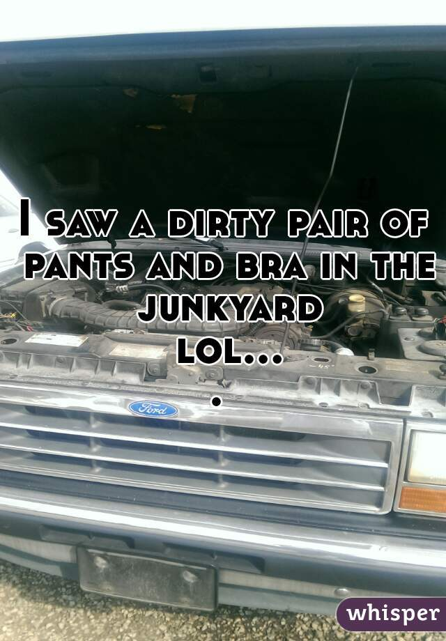 I saw a dirty pair of pants and bra in the junkyard lol....
