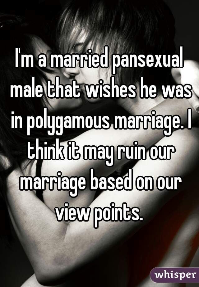 I'm a married pansexual male that wishes he was in polygamous marriage. I think it may ruin our marriage based on our view points.