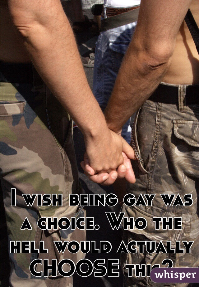 I wish being gay was a choice. Who the hell would actually CHOOSE this?
