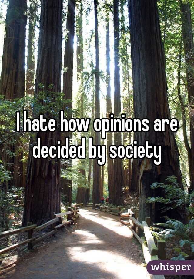 I hate how opinions are decided by society