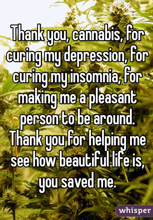 Thank you, cannabis, for curing my depression, for curing my insomnia, for making me a pleasant person to be around. Thank you for helping me see how beautiful life is, you saved me.