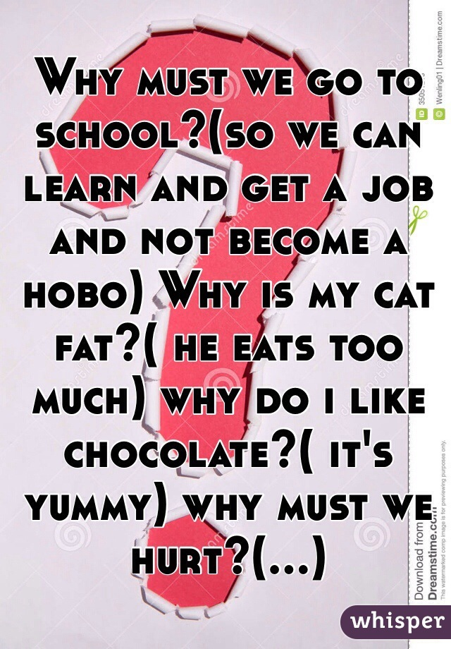 Why must we go to school?(so we can learn and get a job and not become a hobo) Why is my cat fat?( he eats too much) why do i like chocolate?( it's yummy) why must we hurt?(...)