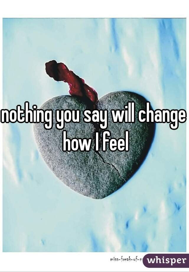 nothing you say will change how I feel