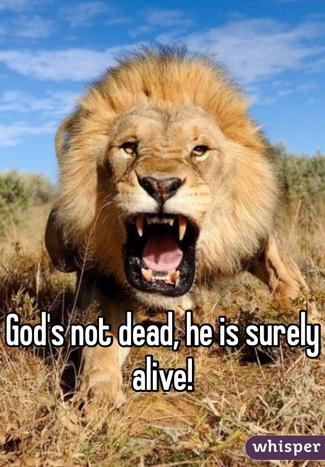 God's not dead, he is surely alive!