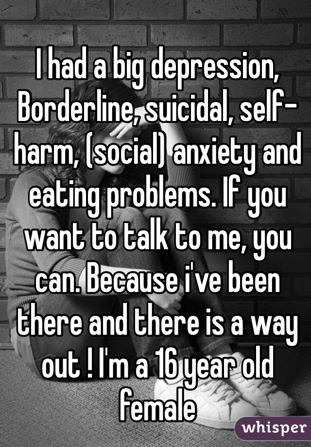I had a big depression, Borderline, suicidal, self-harm, (social) anxiety and eating problems. If you want to talk to me, you can. Because i've been there and there is a way out ! I'm a 16 year old female