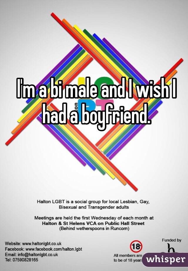 I'm a bi male and I wish I had a boyfriend.