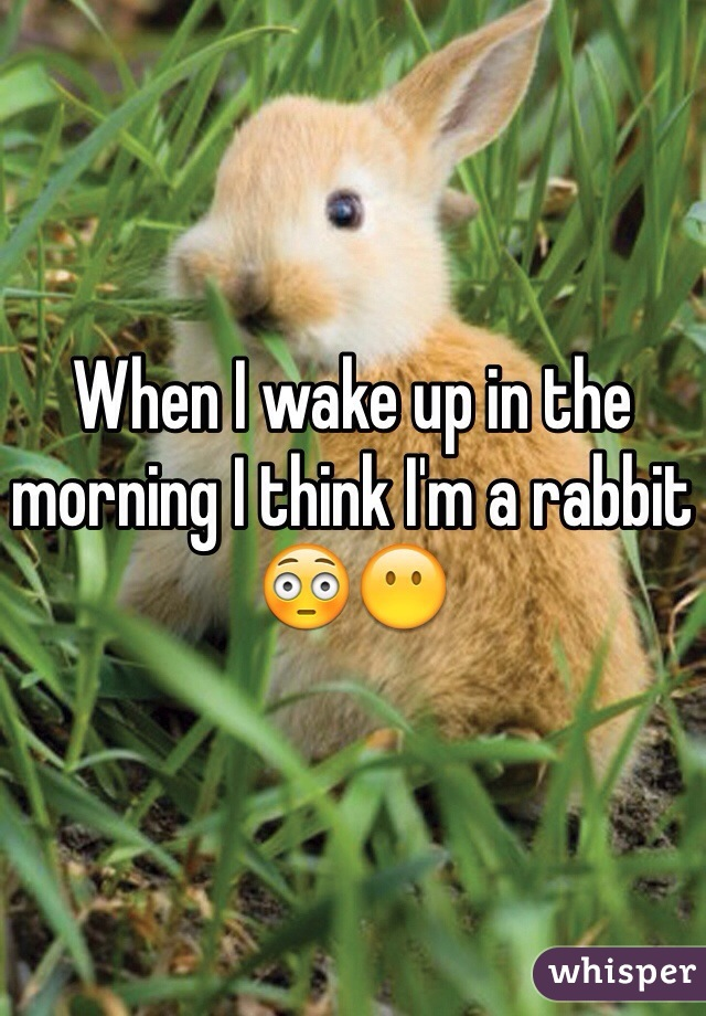 When I wake up in the morning I think I'm a rabbit 😳😶