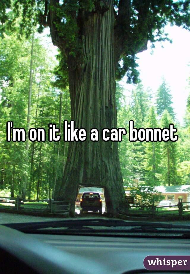 I'm on it like a car bonnet