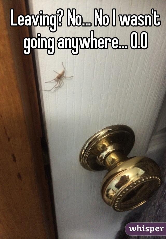 Leaving? No... No I wasn't going anywhere... O.O