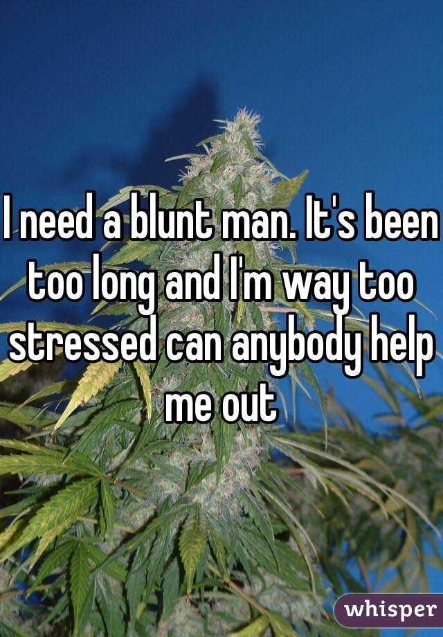 I need a blunt man. It's been too long and I'm way too stressed can anybody help me out