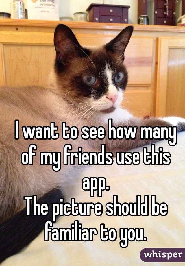 I want to see how many of my friends use this app.  The picture should be familiar to you.