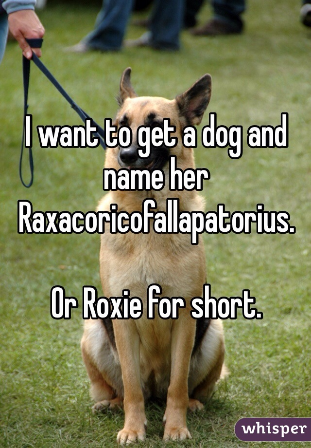 I want to get a dog and name her Raxacoricofallapatorius.  Or Roxie for short.