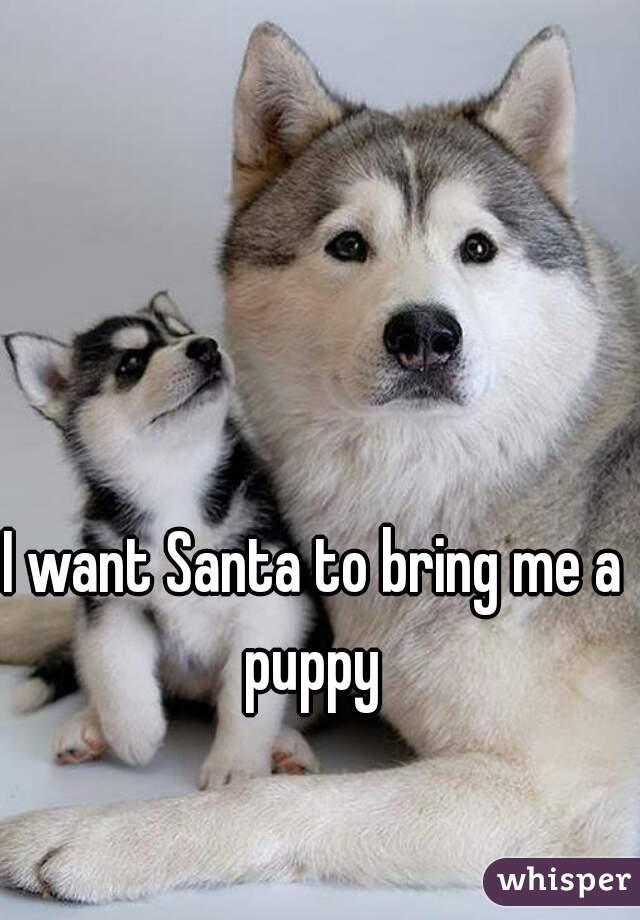 I want Santa to bring me a puppy