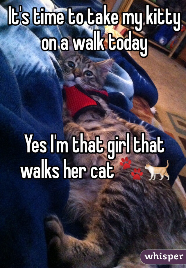 It's time to take my kitty on a walk today    Yes I'm that girl that walks her cat 🐾🐈
