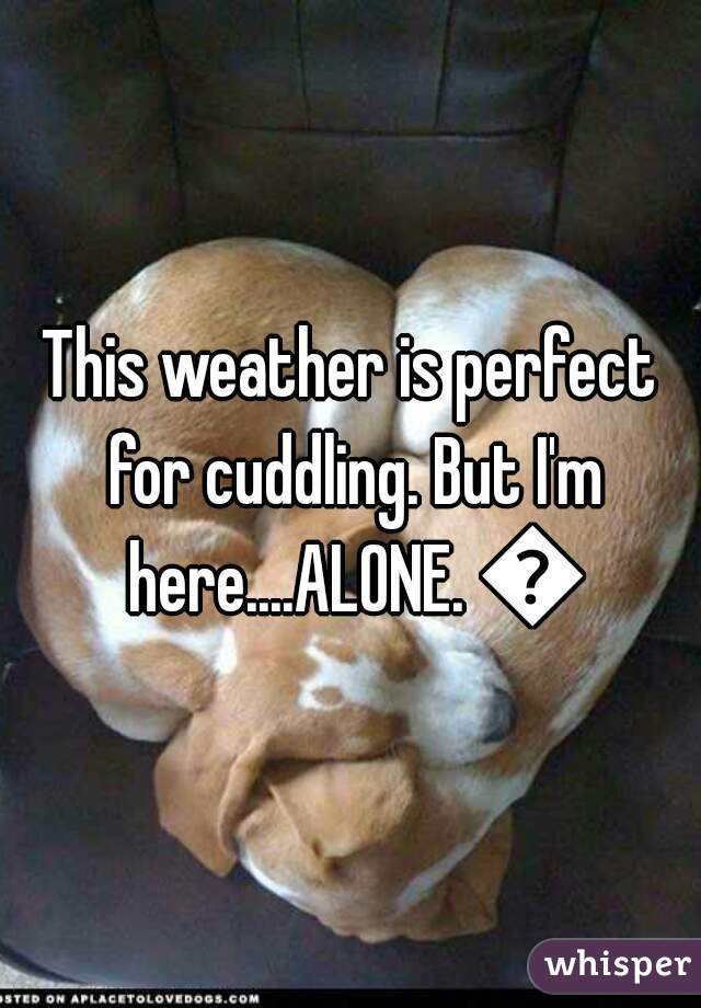 This weather is perfect for cuddling. But I'm here....ALONE. 😥