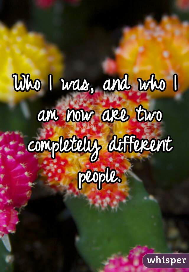 Who I was, and who I am now are two completely different people.