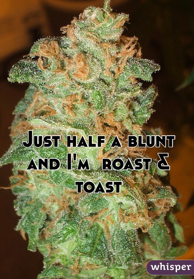 Just half a blunt and I'm  roast & toast