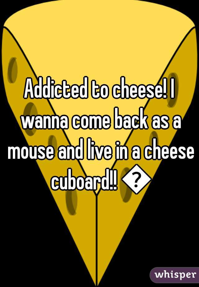 Addicted to cheese! I wanna come back as a mouse and live in a cheese cuboard!! 🐀