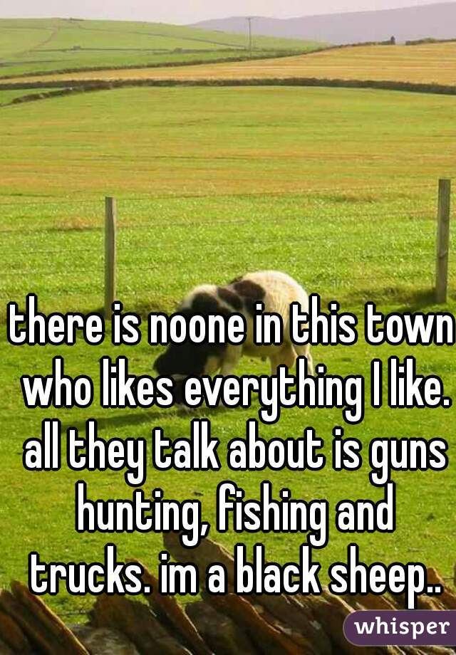 there is noone in this town who likes everything I like. all they talk about is guns hunting, fishing and trucks. im a black sheep..