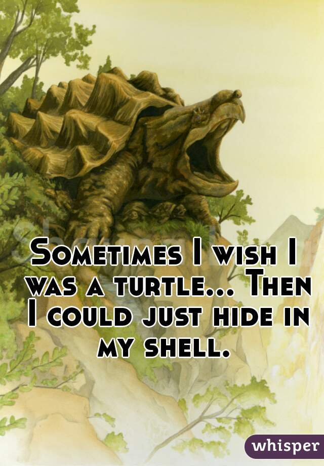 Sometimes I wish I was a turtle... Then I could just hide in my shell.