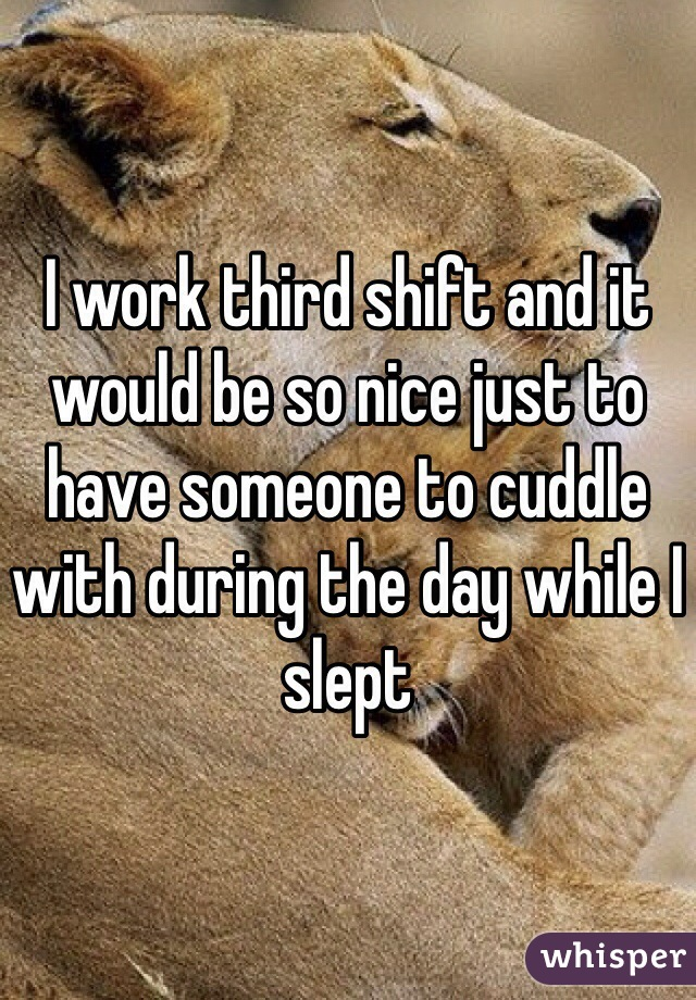 I work third shift and it would be so nice just to have someone to cuddle with during the day while I slept