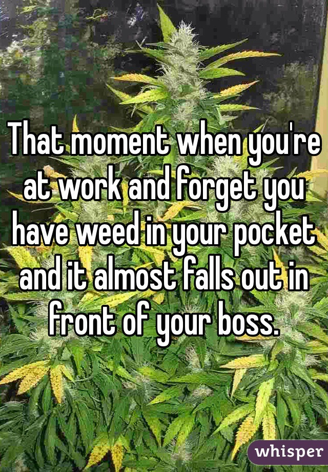 That moment when you're at work and forget you have weed in your pocket and it almost falls out in front of your boss.