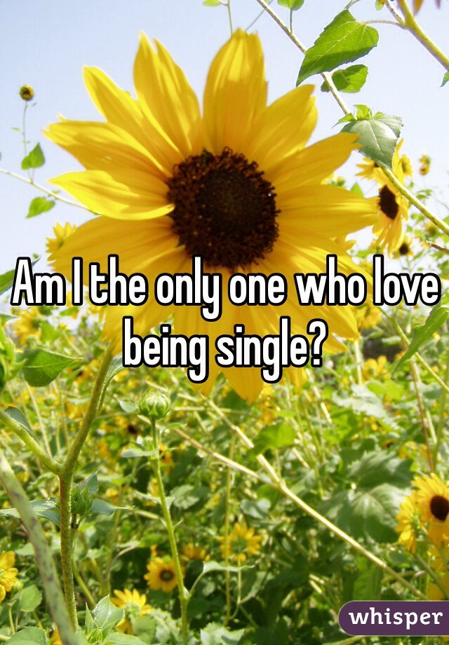Am I the only one who love being single?