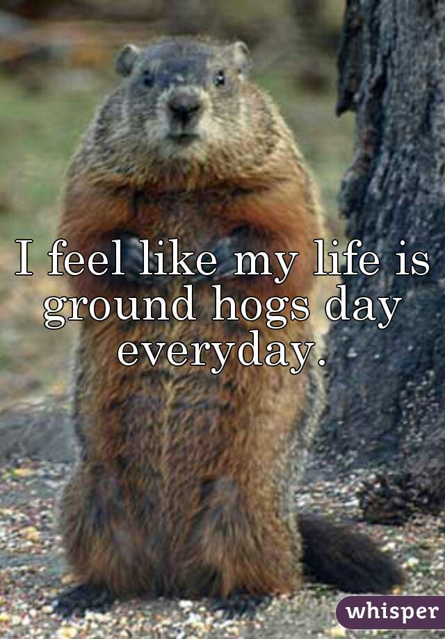 I feel like my life is ground hogs day everyday.