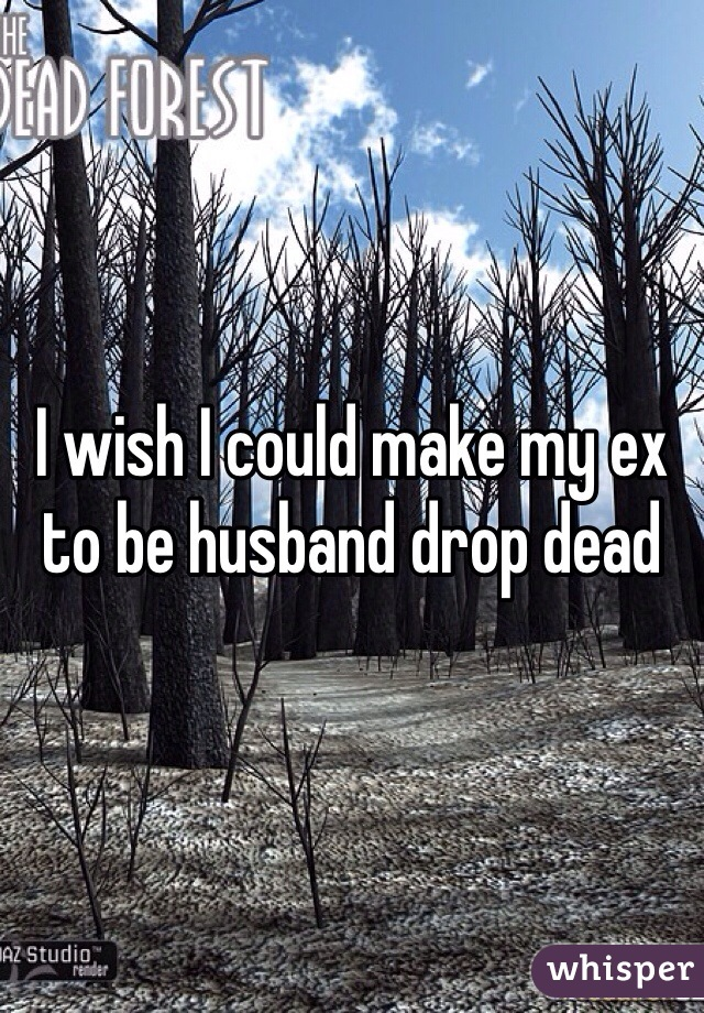 I wish I could make my ex to be husband drop dead