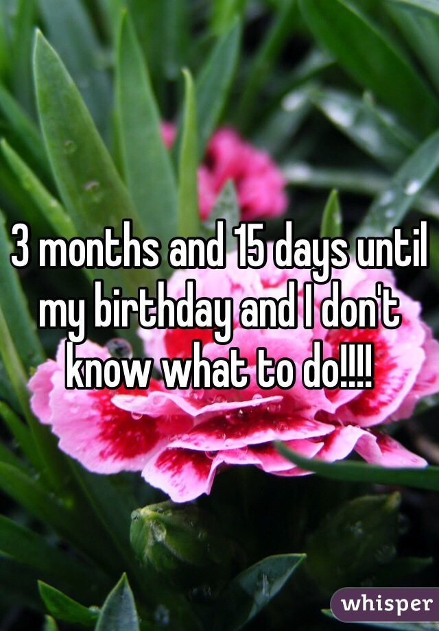 3 months and 15 days until my birthday and I don't know what to do!!!!