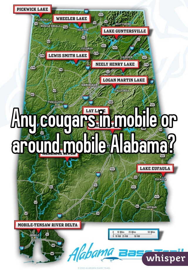 Any cougars in mobile or around mobile Alabama?