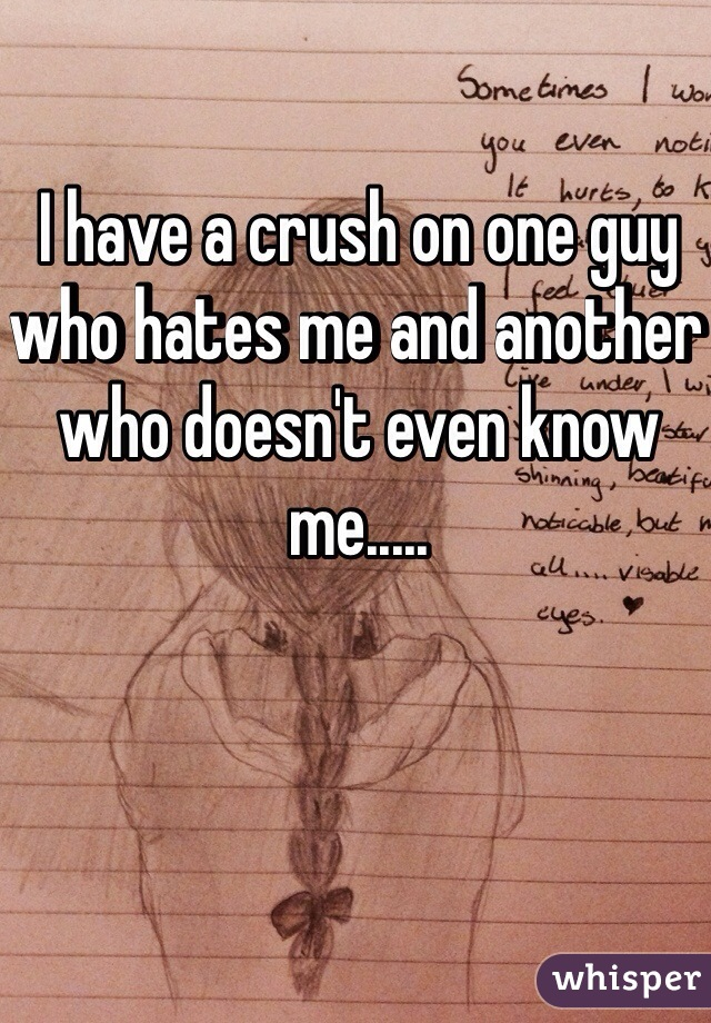 I have a crush on one guy who hates me and another who doesn't even know me.....